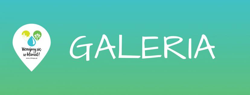 GALERIA 1 - Chorzów: Przygotować się na skutki zmian klimatu