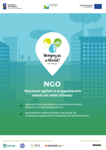 NGO 212x300 - Publikacje edukacyjne