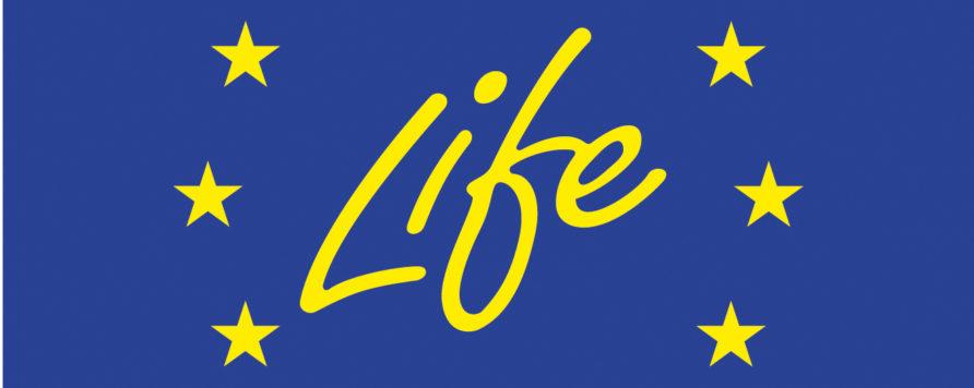 life 892x356 - Dzień Informacyjny LIFE 2017 - 25 kwietnia, Warszawa