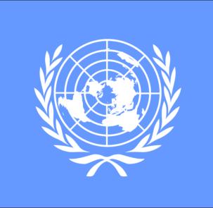 united nations 303926 960 720 303x295 - Projekt adaptacji do zmian klimatu 44 polskich miast  zdobywa uznanie za granicą