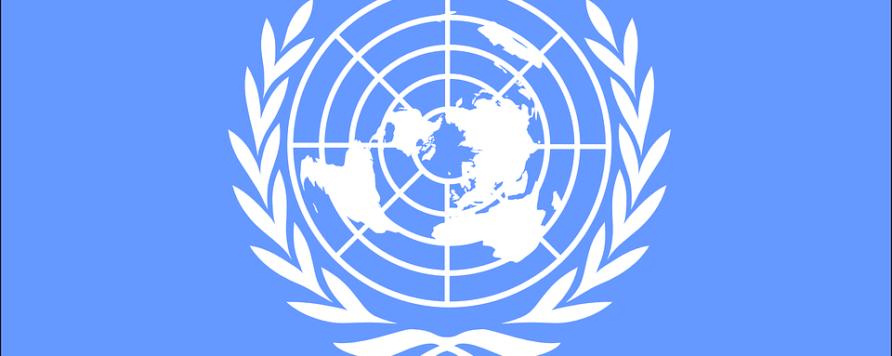 united nations 303926 960 720 892x356 - Projekt adaptacji do zmian klimatu 44 polskich miast  zdobywa uznanie za granicą