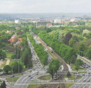 1024px Gdańsk aleja Zwycięstwa 303x295 - Zieleń w mieście
