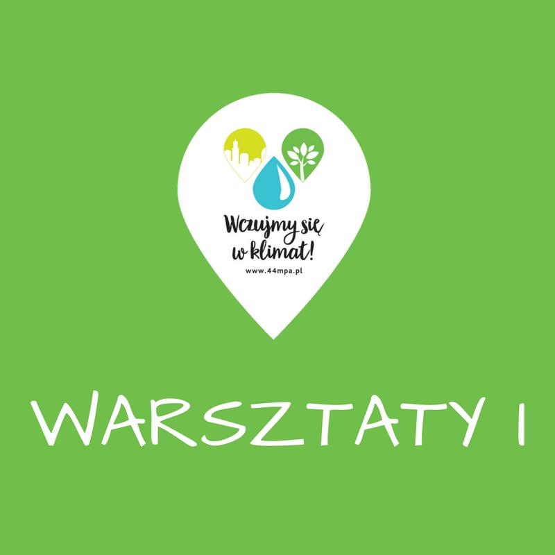 Warsztaty I - maj - wrzesień 2017