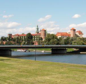 cracow 2715360 303x295 - Raport - Zarządzanie oraz ochrona zieleni w polskich miastach