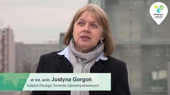 gorgoń2 - W jaki sposób zagospodarowanie przestrzeni miasta wpływa na odczuwanie skutków zmian klimatu przez mieszkańców? Czy przestrzeń silnie zurbanizowana wzmacnia negatywne skutki tych zmian?