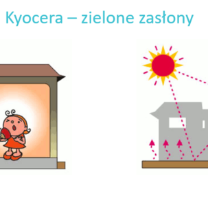 Kyocera – zielone zasłony 303x295 - Multisolving: Combining activities to protect health and climate