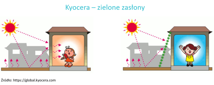 Kyocera – zielone zasłony 892x356 - Multisolving: Combining activities to protect health and climate