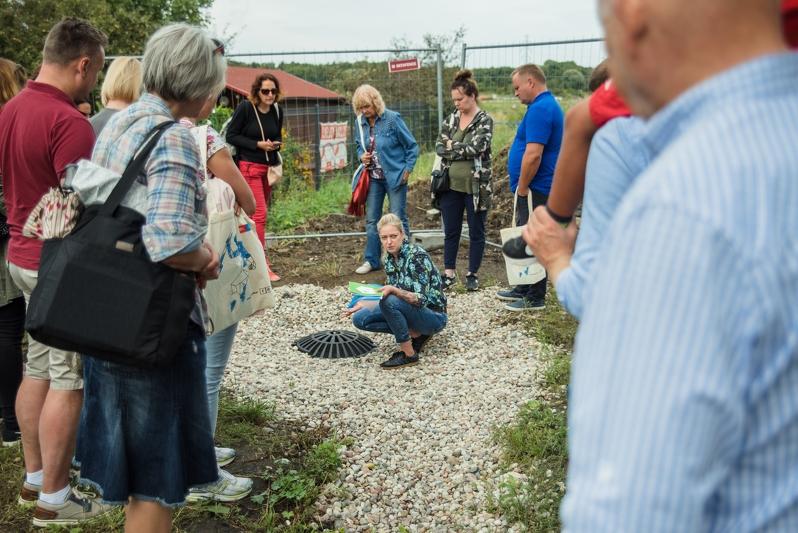 fot gdansk ogrod deszczowy - Gdańsk: Stawia na ogrody deszczowe