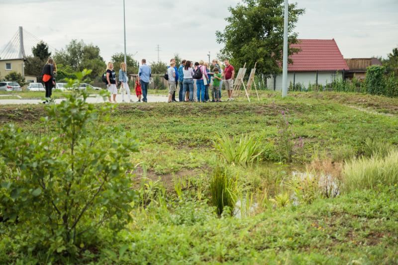 fot gdansk ogrod deszczowy 1 - Gdańsk: Stawia na ogrody deszczowe